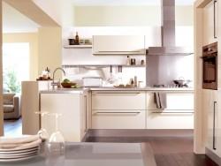 艾高家居橱柜系列各种风格装修效果图