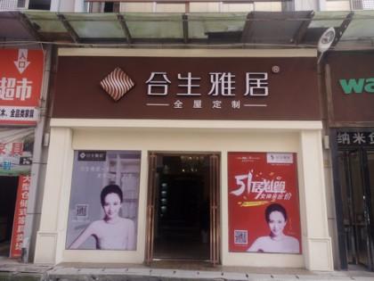 合生雅居全屋定制湖南永州冷水滩专卖店