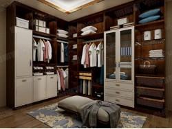 雅丽家新中式衣柜