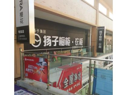 扬子衣柜江苏常州金坛专卖店