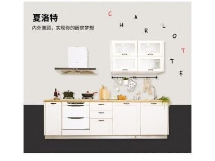 沃根(gen)8090夏(xia)洛特系列櫥櫃
