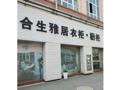 合生雅居全屋定制镇江丹阳市专卖店