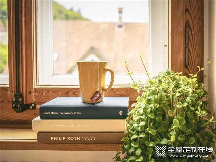 诗尼曼新品鉴赏:诗尼曼轻奢·净享门,你想要的绿色生活由此开启