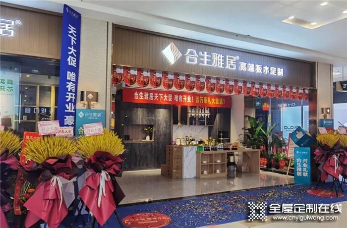 热烈祝贺合生雅居南京江宁红星店盛大开业!