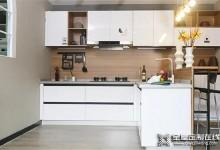 让都市白领爱上做饭的厨房,由莱茵艾格为你打造